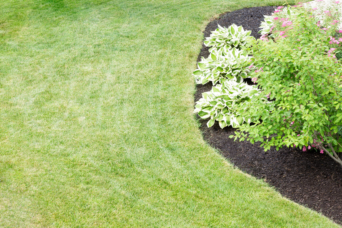 Augusta Lawn Care and Maintenance is standing by to help give you the lawn you've always wanted.